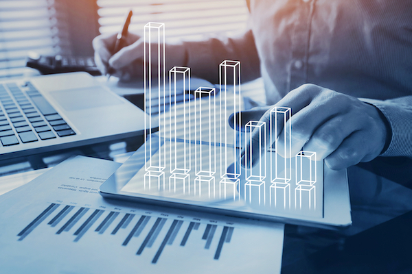 Financial modeling of a project's cash flows and debt on a proforma will help to assess the economic feasibility.